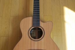 Gitarre Lakewood